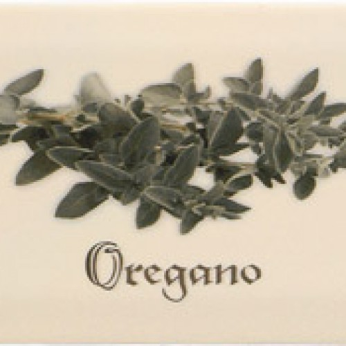 Decor Crema Oregano 10*20